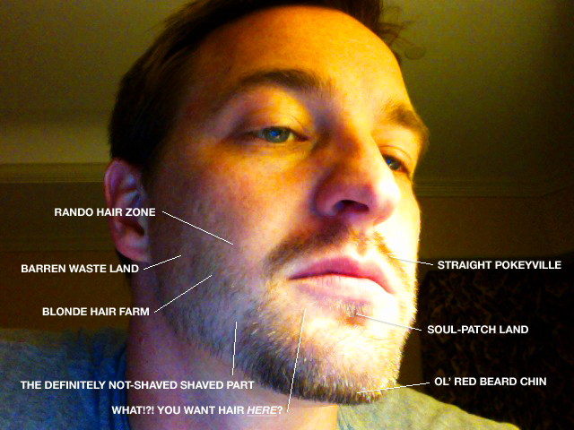 Seth Gunderson :: The Anatomy of a Seth Beard